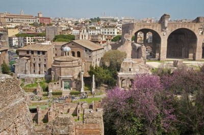 Palatine Hill Private Tour (1).jpg