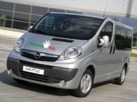 Shuttle from Rome Hotels to Fiumicino Airport with Minivan (2).jpg