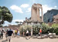 Skip the Line Tour  Colosseum, Roman Forum and Palatine Hill (27).jpg