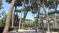 Borghese Gallery and Gardens Guided Walking Tour (1).jpg