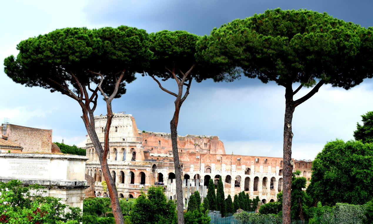 The Colosseum or Coliseum also known as the Flavian Amphitheatre or Colosseo , is an oval amphitheatre in the centre of the city of Rome, Italy.