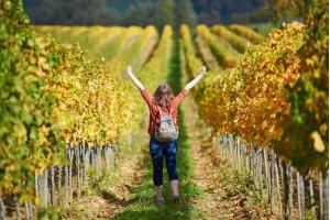 Things to do in Tuscany- Woman tourist walking in Tuscan vineyards in Val d'Orcia, Tuscany, Italy