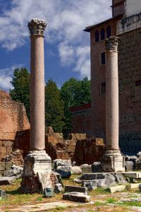 The Basilica Aemilia in the Forum Romanum