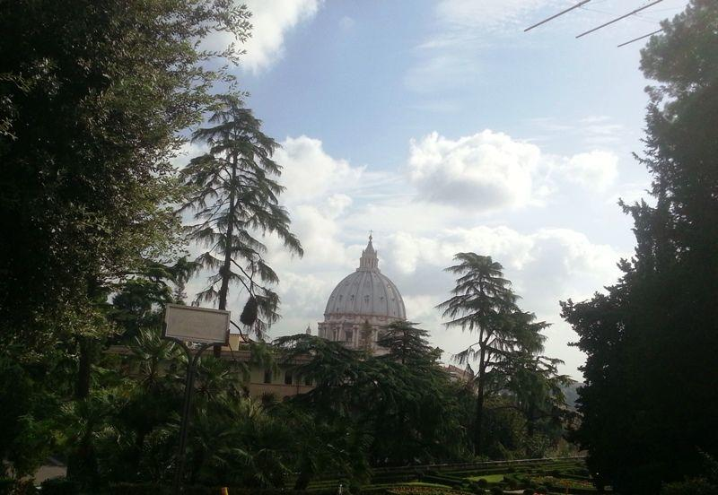Vatican Gardens, Sistine Chapel and St. Peter's Guided Tour (8)