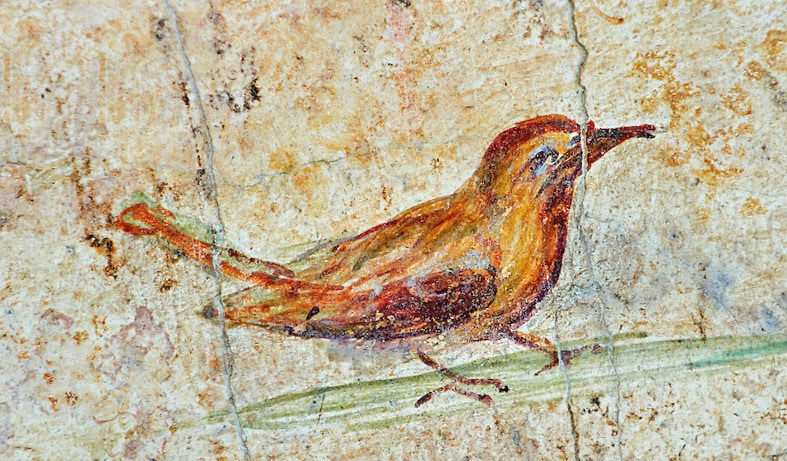 A bird, Roman Fresco, Rome, 5th c. A.D., National Roman Museum