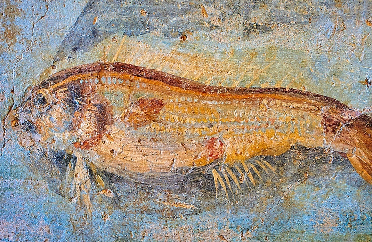 Detail, Fresco of marine life, 5th. c. A.D, National Roman Museum, Rome, Italy.