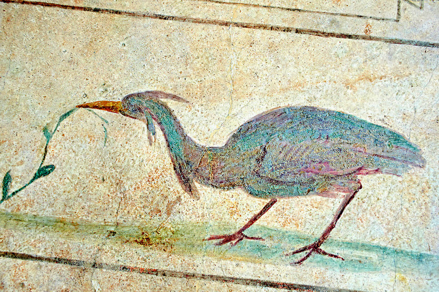 Fresco of an exotic bird, 5th c. A.D, Rome. National Roman Museum, Rome, Italy.