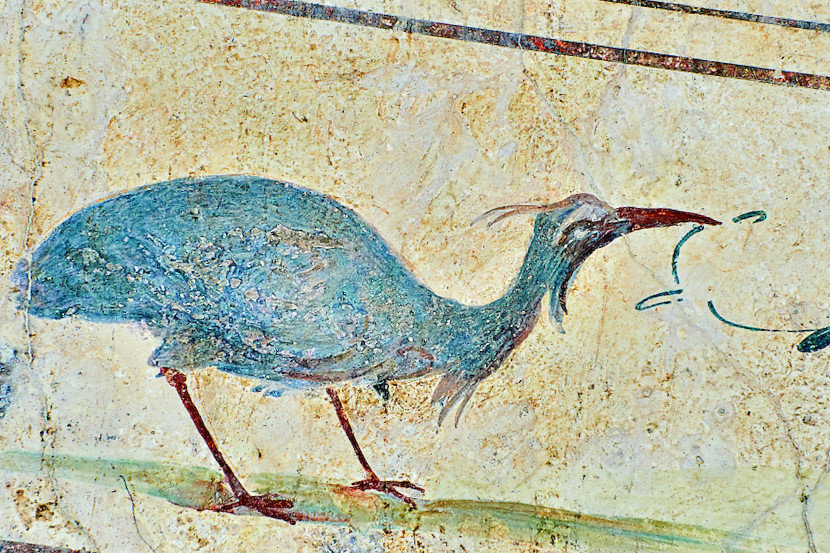 Fresco of an exotic bird, 5th. c. A.D, Rome, Italy.