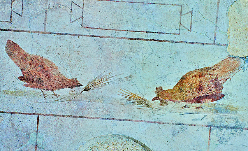 Fresco of chickens 5th c. A.D, Rome, Italy - National Roman Museum