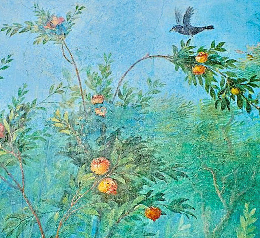 Fruit Trees ,from Villa Livia, 5th. c. A (5)