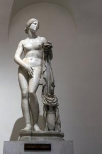 Marble statue of Aphrodite by Cnidus at the Palazzo Altemps. Ancient Roman copy after a Greek original of the 4th century.