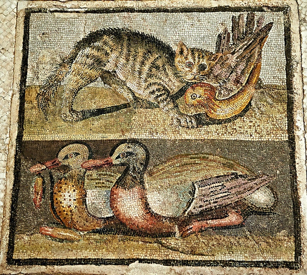Mosaic with cat and ducks,1st century AD, National Roman Museum, Rome, Italy.