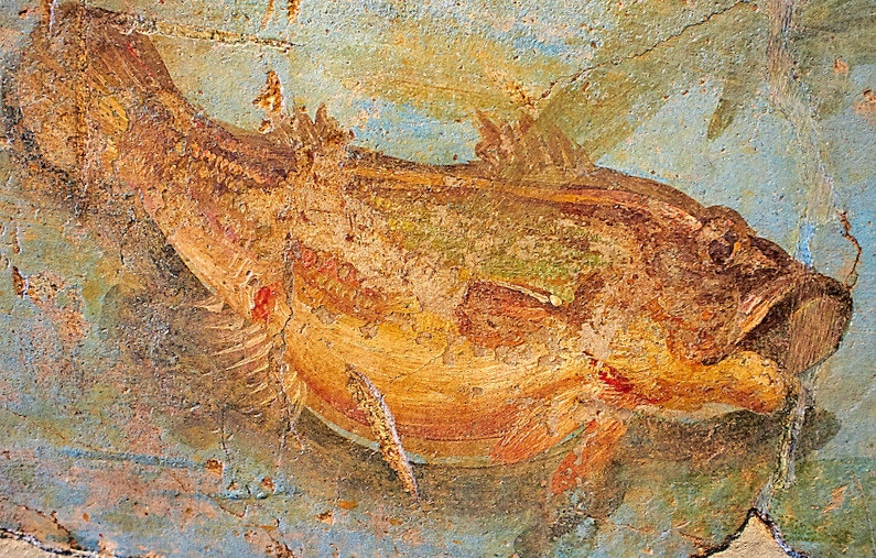 Roman Fresco, 5th c. A.D., Detail of marine National Roman Museum, Rome, Italy (1)