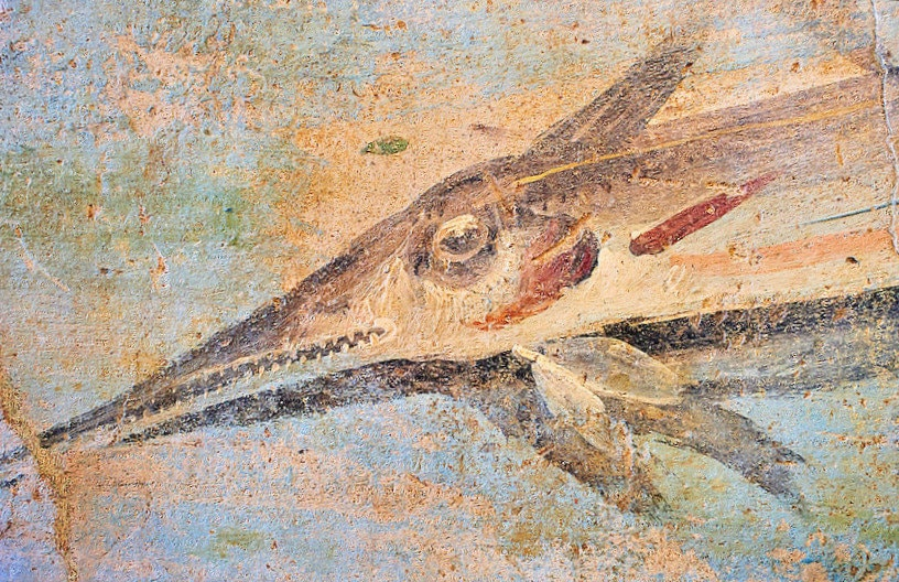 Roman Fresco, 5th c. A.D., Detail of marine National Roman Museum, Rome, Italy (2)