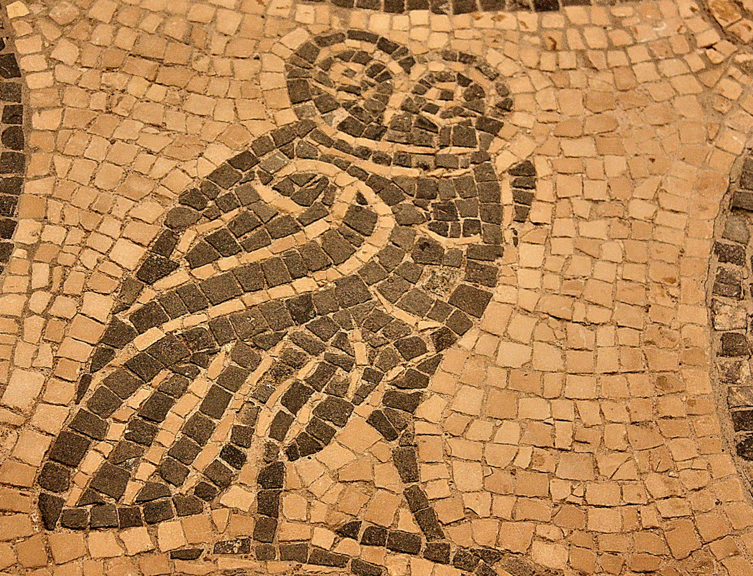 Roman Mosaics of National Roman Museum, Rome (1)